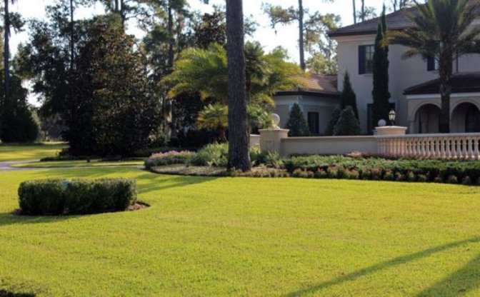 Luxe landscape: Golden Ocala single family